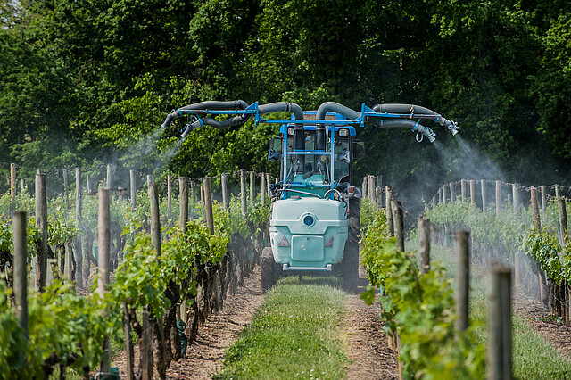 Agricultural chemical treatments in spring vineyard